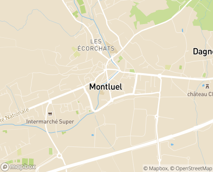 Localisation SESSAD - 01120 - Dagneux