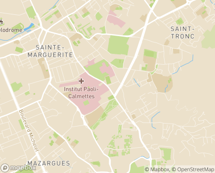 Localisation Hôpital Henri Gastaut - 13009 - Marseille 09