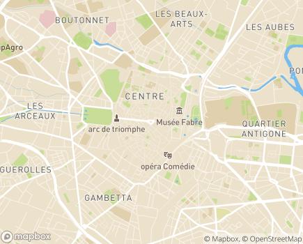 Localisation Direction Territoriale de la Protection Judiciaire de la Jeunesse - 34961 - Montpellier