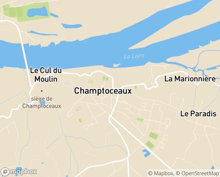 Localisation Maison de Retraite Saint-Louis - 49270 - Orée d'Anjou