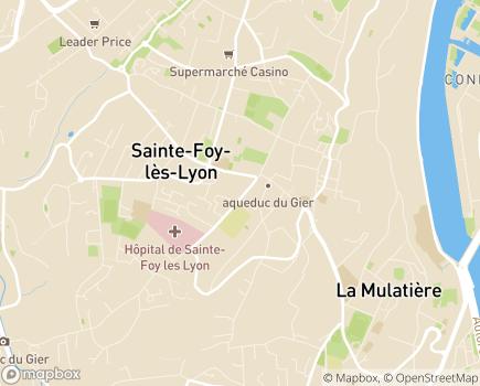 Localisation Maison d'Enfants à Caractère Social Notre Dame - 69110 - Sainte-Foy-lès-Lyon