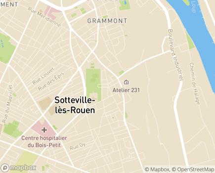 Localisation Centre Hospitalier du Bois-Petit - 76300 - Sotteville-lès-Rouen