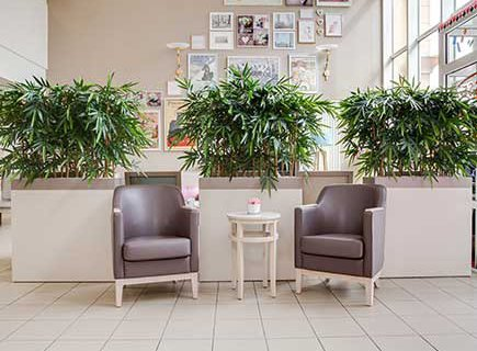 EHPAD Les Jardins des Acacias - 94410 - Saint-Maurice (5)